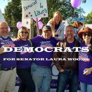 woods-image-of-group-of-alleged-democrats-for-senator-laura-woods